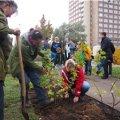 "Foto: Caritasverband Leipzig e.V.: ""Essbarer Garten"""